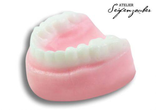 Soap Dentition (2 pieces)